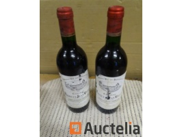 2-bottles-de-bordeau-saint-emilion-grand-cru-chateau-basle-and-jean-voisin-1987-829862G.jpg