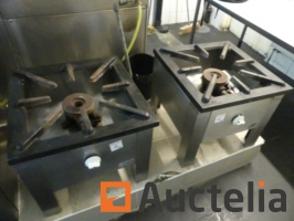 2-gas-stoves-1-fireplace-1044362G.jpg