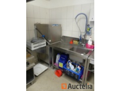 Dishwasher and sink with shower