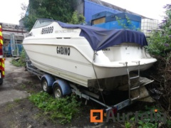 Thule Trailer with Wellcraft Excell 23 SE Boat